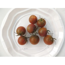 Tomate cerise ancienne 'Black Cherry' - (Graines / Seeds)