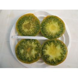 Tomate ancienne  'Malakhitovaya Shkatulka' (Graines / seeds)