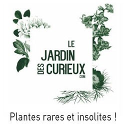 Le Jardin des Curieux